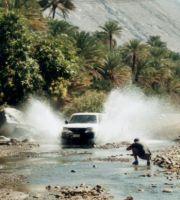 Oman_0402_Bach