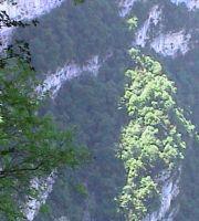 2003_05_30_Vercors_Biken_0019_Wasserfall