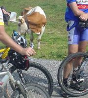 2004_09_11_Geieggen_Biken_0042_Christoph_Urs_Medium